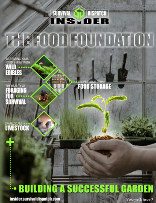 woman holding a plant in a greenhouse for food foundation survival guide cover