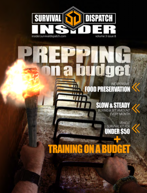 man holding fire torch climbing out of a bunker for prepping on a budget cover