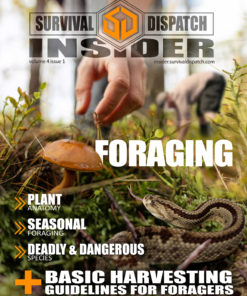 foraging survival guide cover with a snake and people picking mushrooms