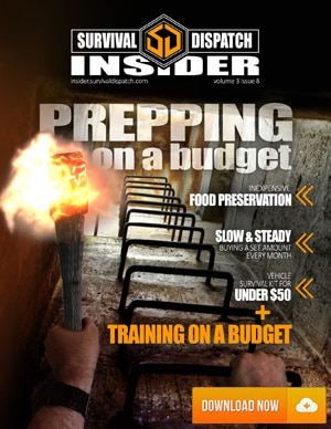 prepping on a budget for the survival of your family