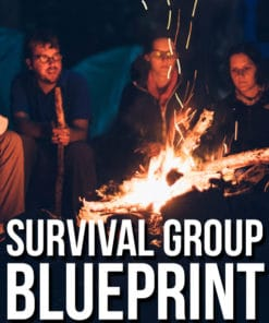 survival group blueprint group image 3